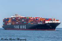 2017-06-27 Container Ship Race